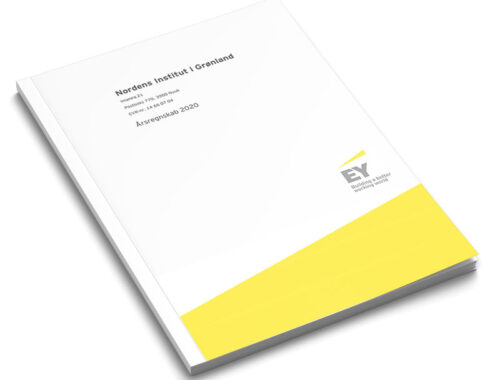 Download NAPAs årsrapport 2020